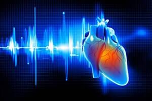 Звук сердца